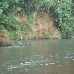 visita al rio 2