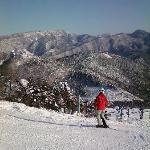 Skiing near Yudanaka