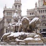 Plaza de Cibeles Photo