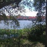 Lake at Barefoot Landing