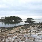 Plenty of offshore islands