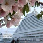 Kobe Harborland Photo