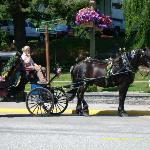 So much fun! I love horse-drawn buggy rides.