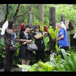 Playing with beautiful birds at Sunway Theme Park Lagoon