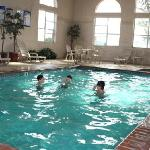 Best Western Lubbock Windsor Inn Swimming Pool