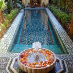 la vasca e la fontana con le rose