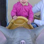 Little Girl Showing how Chic an Elephant Ride can be