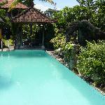 Swimming Pool & Gazebo
