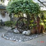 Lovely gardens and decorations