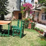 Acme Guest House garden