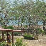 view from villa towards beach