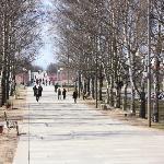A walk to the Novgorod Kremlin