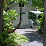 Rainforest Cottage