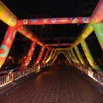 'Bouncy Castle' Bridge to Robertson Walk