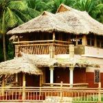 Blue Crab - cottage ( contact no: 09895343150)
