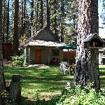 Tisher Cabin at Holly's Place, South Lake Tahoe, CA