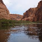 Glen Canyon - Colorado River Float