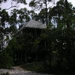 turtle tower outside 1