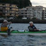 Harbor Seal hauling out on our kayak!