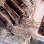 Tsukiji Squid