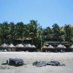 Photo of Los Corales