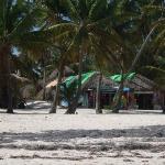 27 janvier 2010 Marché sur la plage