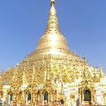 Shwedagon Pagoda① (25189344)