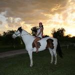 cabalgatas en hermosos caballos