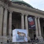 Grand Palais Photo
