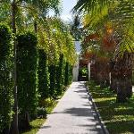 The walkway from reception to all the bungalows