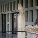 Bilde fra Akropolismuseet