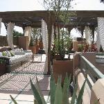 la terrasse / solarium