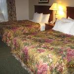 Comfortable beds but thin comforters