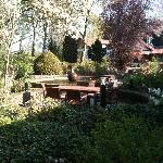 Garden in the center of the hotel buildings