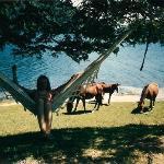 Lago Correntoso. 1992. Parque Nacional.