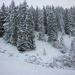 Mont d'Arbois Ski Area