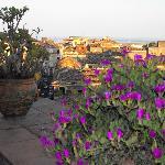 Terrace View 4