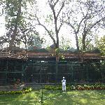 les volières dans le parc