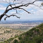 Huachuca Mtn's - Carr Canyon #1