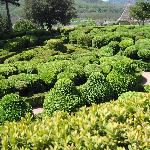 Giardino Marqueyssac