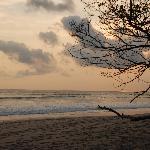 Beach view at Casas Pura Vida - Santa Teresa CR