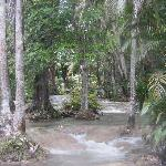 The Beauty of Dunns River