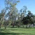 The park on the Spit, seen from the Spit walk