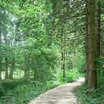 Alpbachweg * Ettenhausen - Schleching