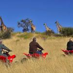 Go for a quad-bike drive in the Kalahari