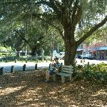 Ice cream neath the moss in Micanopy