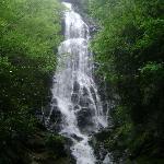Mingo Falls in Cherokee, NC