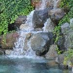 Pool-Felsquellbad im Garten