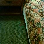 Worst carpet stain--AM front desk receptionist was uninterested when I shared this photo.