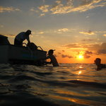 Evening Dive